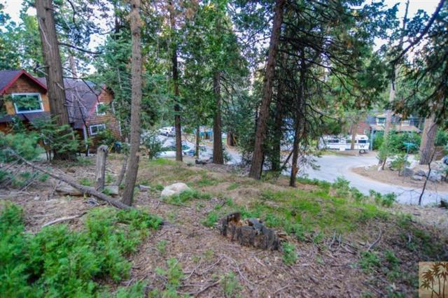 305 Cedar Brook, Twin Peaks, CA 92391 (MLS #217000374) :: The John Jay Group - Bennion Deville Homes