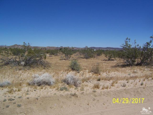 0 Cobalt Road, Joshua Tree, CA 92252 (MLS #217012678) :: The John Jay Group - Bennion Deville Homes