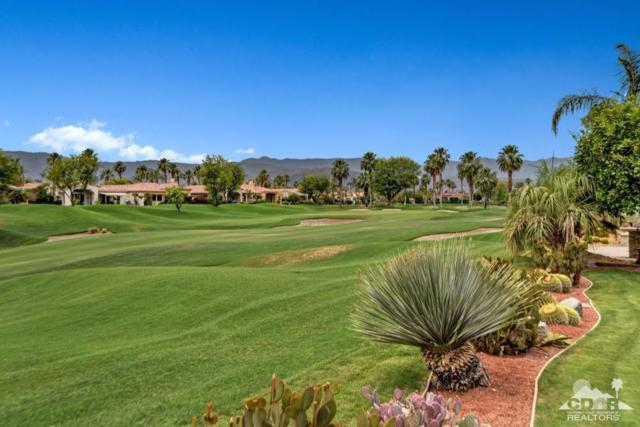 467 Tomahawk Drive, Palm Desert, CA 92211 (MLS #217015540) :: Brad Schmett Real Estate Group
