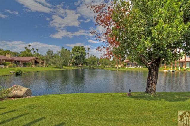 80 Running Springs Drive, Palm Desert, CA 92211 (MLS #217016110) :: Brad Schmett Real Estate Group