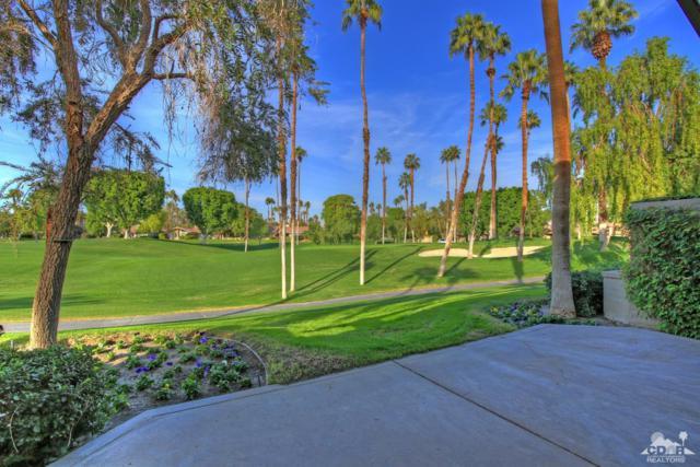 186 Wild Horse Drive, Palm Desert, CA 92211 (MLS #217017726) :: Brad Schmett Real Estate Group