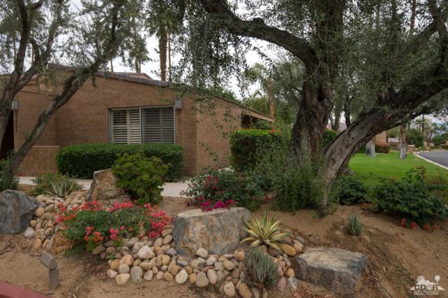 73506 Foxtail Lane, Palm Desert, CA 92260 (MLS #217018146) :: Brad Schmett Real Estate Group