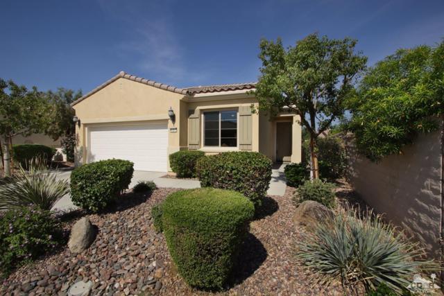 41017 Calle Pampas, Indio, CA 92203 (MLS #217019944) :: Brad Schmett Real Estate Group