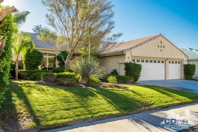 27718 Avenida Maravilla, Cathedral City, CA 92234 (MLS #217022170) :: Brad Schmett Real Estate Group