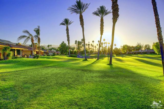244 Calle Del Verano, Palm Desert, CA 92260 (MLS #217022934) :: Brad Schmett Real Estate Group