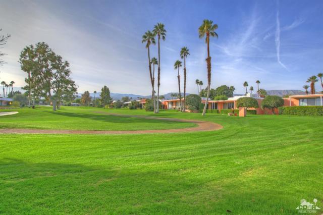 73569 Amir Drive, Palm Desert, CA 92260 (MLS #217023684) :: Brad Schmett Real Estate Group