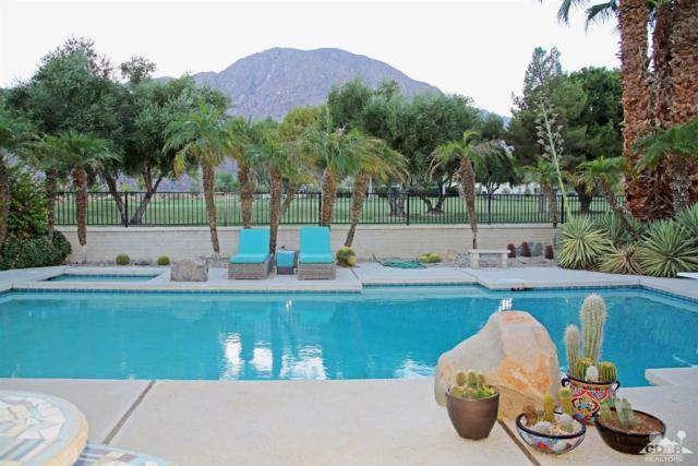 1450 De Anza Drive, Borrego Springs, CA 92004 (MLS #217027332) :: The John Jay Group - Bennion Deville Homes