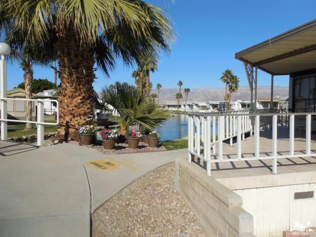 84250 Indio Springs #172, Indio, CA 92201 (MLS #217027842) :: The John Jay Group - Bennion Deville Homes