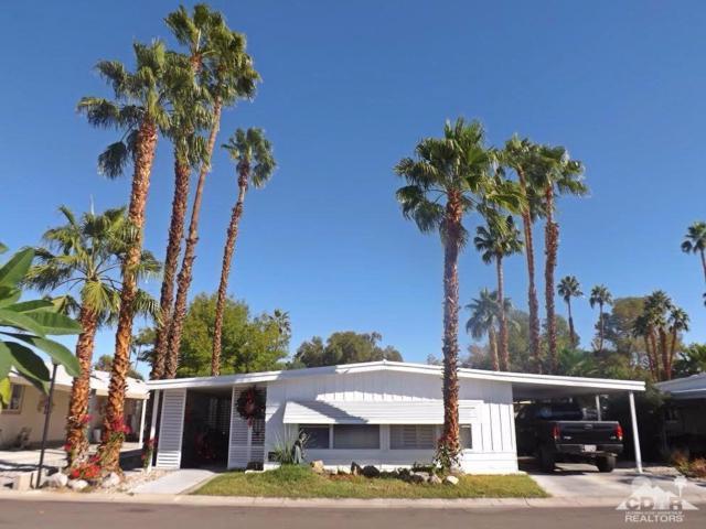 145 Estrada Way, Cathedral City, CA 92234 (MLS #217028336) :: Brad Schmett Real Estate Group