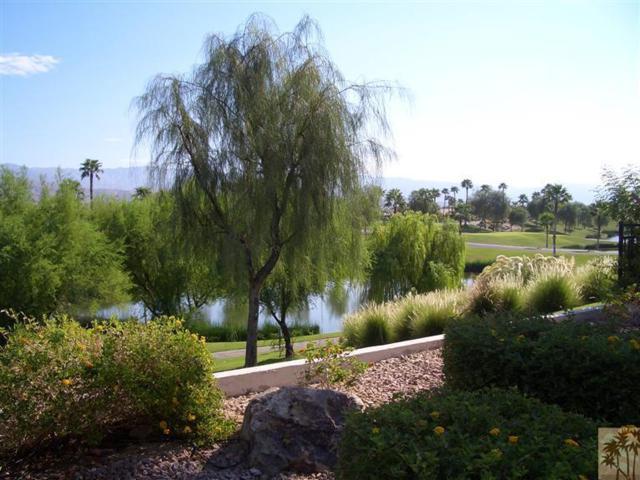 80108 Camino Santa Elise, Indio, CA 92203 (MLS #217028584) :: Brad Schmett Real Estate Group