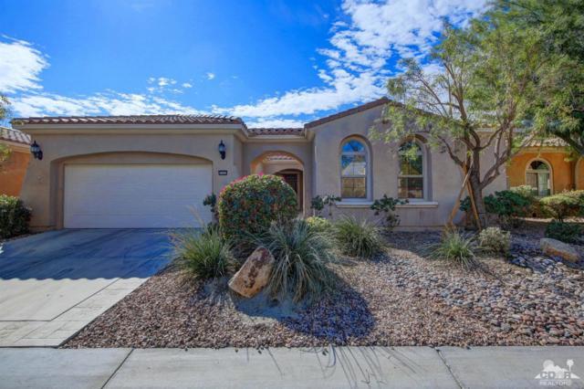 81055 Avenida Pamplona, Indio, CA 92203 (MLS #217028612) :: Brad Schmett Real Estate Group