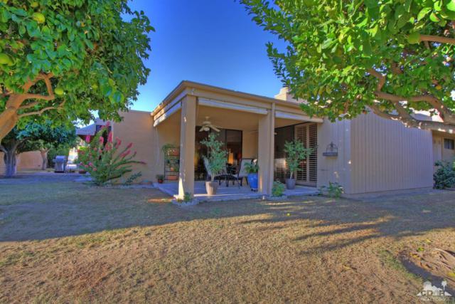 1370 E Marion Way, Palm Springs, CA 92264 (MLS #217029022) :: Brad Schmett Real Estate Group