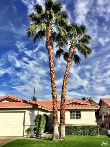 51890 Avenida Ramirez, La Quinta, CA 92253 (MLS #217031558) :: Brad Schmett Real Estate Group