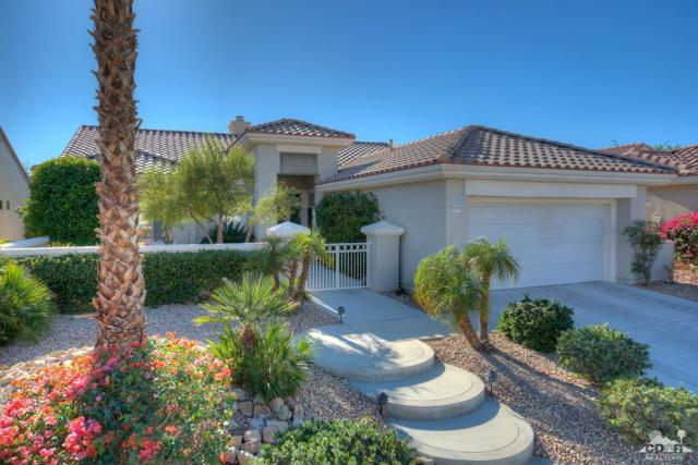 78733 Falsetto Drive, Palm Desert, CA 92211 (MLS #217033194) :: The Jelmberg Team