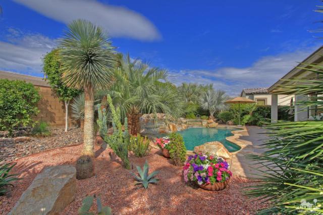 61275 Portulaca Drive, La Quinta, CA 92253 (MLS #217034542) :: Brad Schmett Real Estate Group