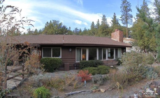 54680 Falling Leaf Drive, Idyllwild, CA 92549 (MLS #218001098) :: Deirdre Coit and Associates