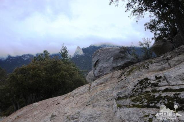 0 Marian View, Idyllwild, CA 92549 (MLS #218005404) :: Deirdre Coit and Associates