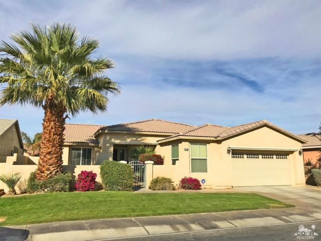 81356 Avenida Romero, Indio, CA 92201 (MLS #218005594) :: Brad Schmett Real Estate Group