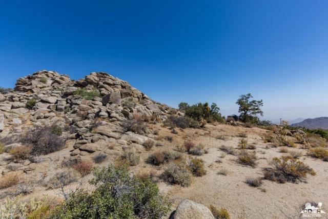 43 Yucca Lot43, Mountain Center, CA 92561 (MLS #218006096) :: The John Jay Group - Bennion Deville Homes
