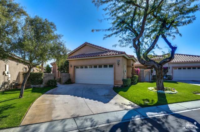 45658 Big Canyon Street, Indio, CA 92201 (MLS #218007358) :: Brad Schmett Real Estate Group