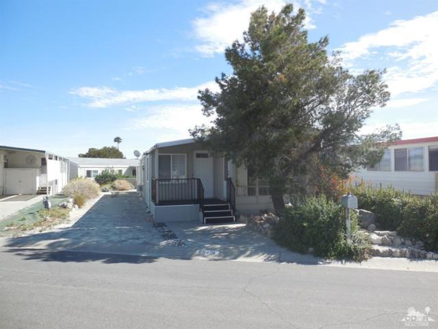 69421 Midpark Drive, Desert Hot Springs, CA 92241 (MLS #218009272) :: Deirdre Coit and Associates