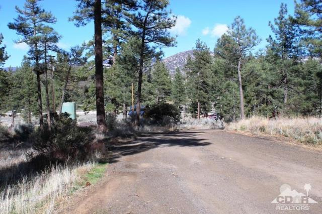 0 Devils Ladder, Mountain Center, CA 92561 (MLS #218009954) :: The John Jay Group - Bennion Deville Homes