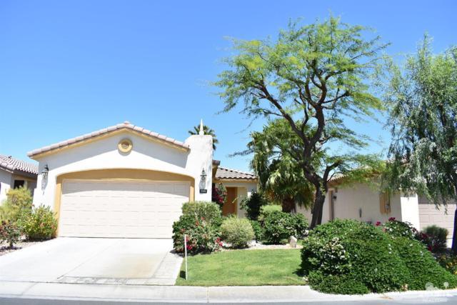 80576 Avenida Los Padres, Indio, CA 92203 (MLS #218012264) :: Brad Schmett Real Estate Group