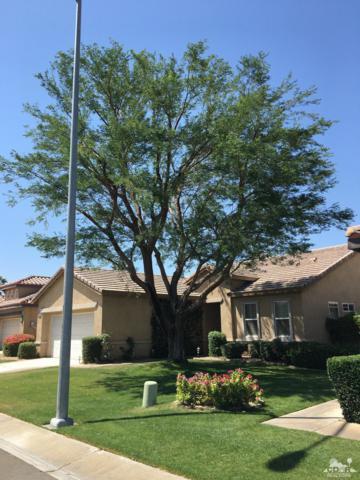 82766 Matthau Drive, Indio, CA 92201 (MLS #218013160) :: Brad Schmett Real Estate Group