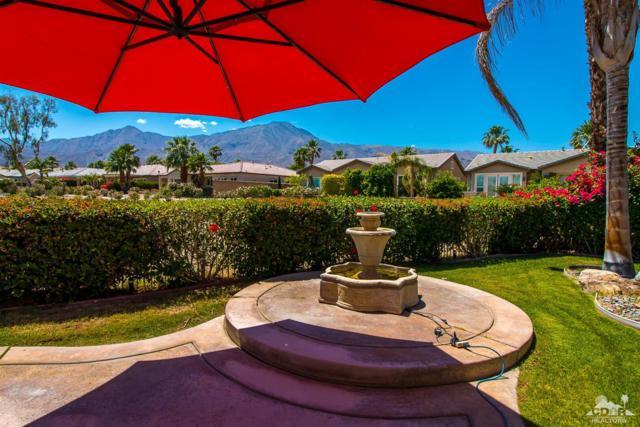 81153 Red Rock Road, La Quinta, CA 92253 (MLS #218013882) :: Team Wasserman