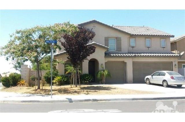 3010 Wollyleaf Court, Perris, CA 92571 (MLS #218014554) :: Team Wasserman
