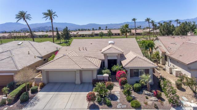 78735 Sunrise Canyon Avenue, Palm Desert, CA 92211 (MLS #218014628) :: Team Wasserman