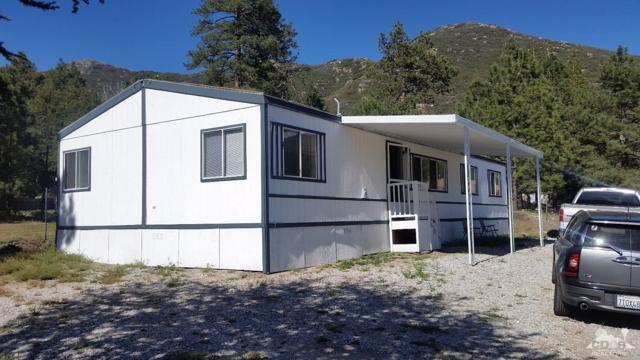 31840 Pine Street, Mountain Center, CA 92561 (MLS #218014966) :: Deirdre Coit and Associates