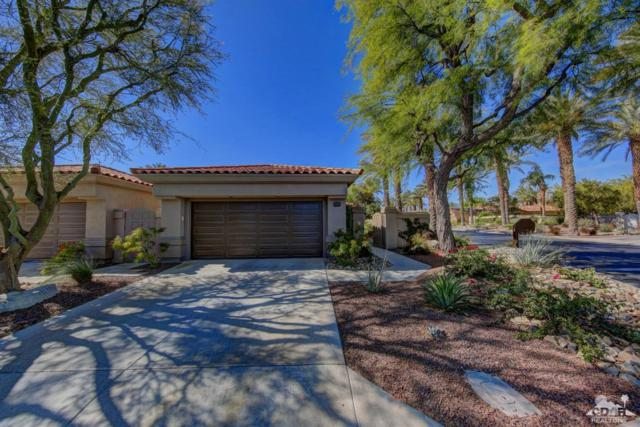 661 Box Canyon Trail, Palm Desert, CA 92211 (MLS #218015176) :: Team Wasserman