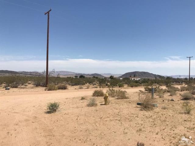 56785 Amargon Road, Yucca Valley, CA 92285 (MLS #218015328) :: Team Wasserman