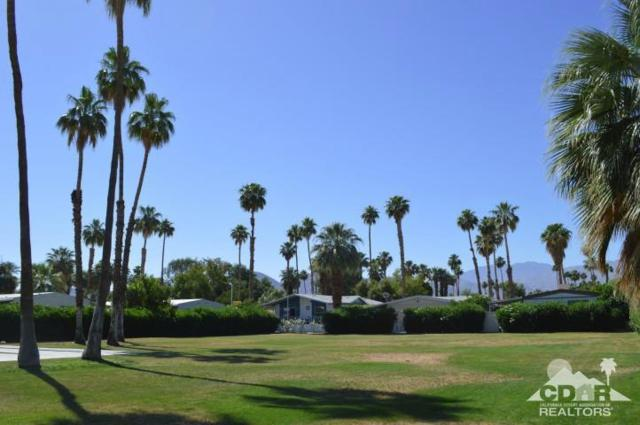 43155 Portola Avenue #96, Palm Desert, CA 92260 (MLS #218015414) :: The Jelmberg Team