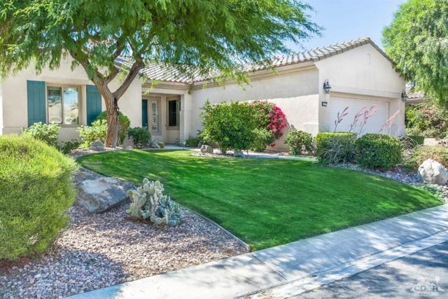 40317 Calle Ebano, Indio, CA 92203 (MLS #218015688) :: Brad Schmett Real Estate Group