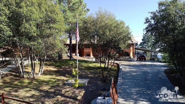 52411 Double View Drive, Idyllwild, CA 92549 (MLS #218016620) :: Hacienda Group Inc