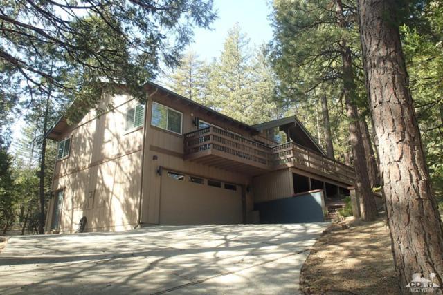 25651 Cedar Glen Drive, Idyllwild, CA 92549 (MLS #218016632) :: Hacienda Group Inc