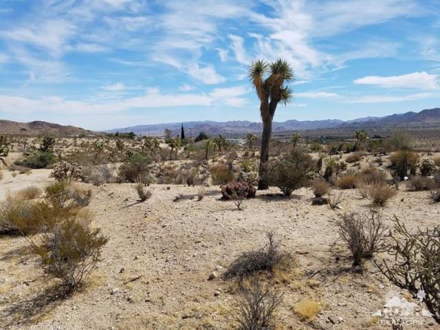 5861 Linda Lee Drive, Yucca Valley, CA 92284 (MLS #218017092) :: Team Wasserman