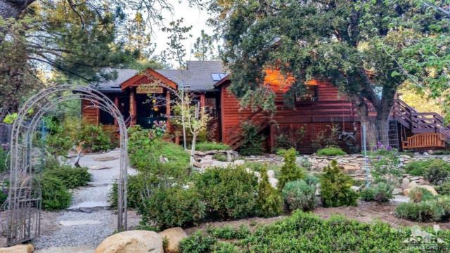 54760 Jameson Drive, Idyllwild, CA 92549 (MLS #218017794) :: Hacienda Group Inc