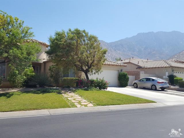 961 Alta Cresta, Palm Springs, CA 92262 (MLS #218018388) :: Brad Schmett Real Estate Group
