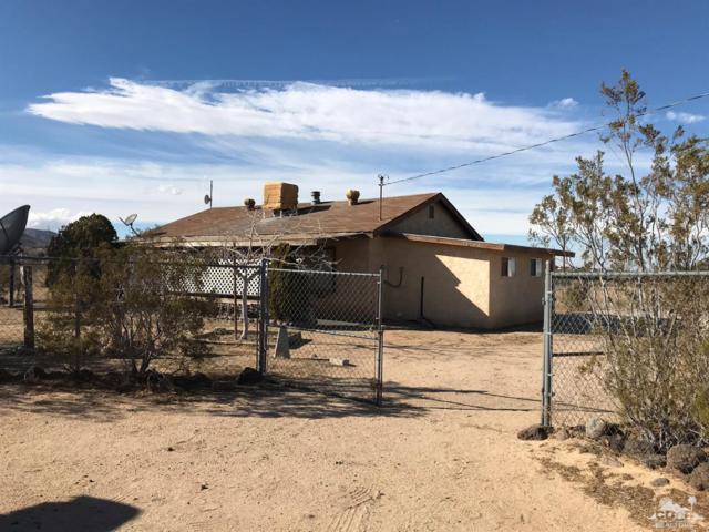 56180 Luna Vista Lane, Yucca Valley, CA 92284 (MLS #218019148) :: Team Wasserman