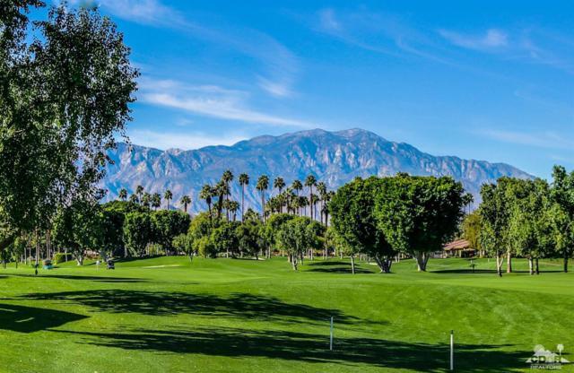 186 Wild Horse Drive, Palm Desert, CA 92211 (MLS #218019454) :: Brad Schmett Real Estate Group