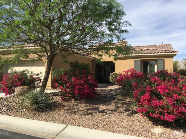 81716 Camino Vallecita, Indio, CA 92203 (MLS #218022394) :: Brad Schmett Real Estate Group