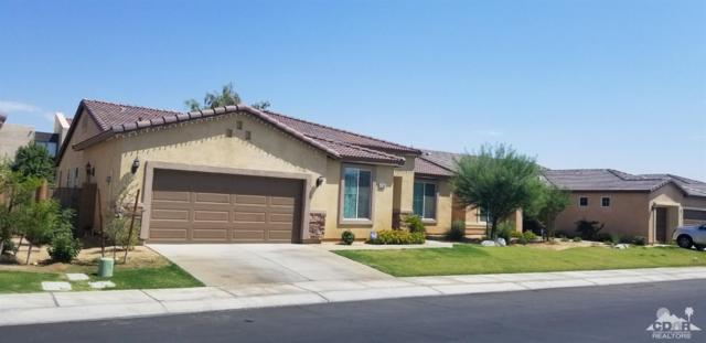 81306 Avenida Gonzalez, Indio, CA 92201 (MLS #218022674) :: Team Wasserman