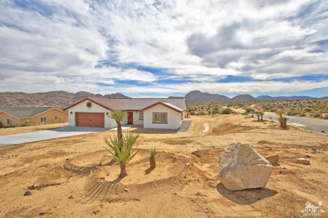 7765 Elwood Street, Joshua Tree, CA 92252 (MLS #218023326) :: Brad Schmett Real Estate Group