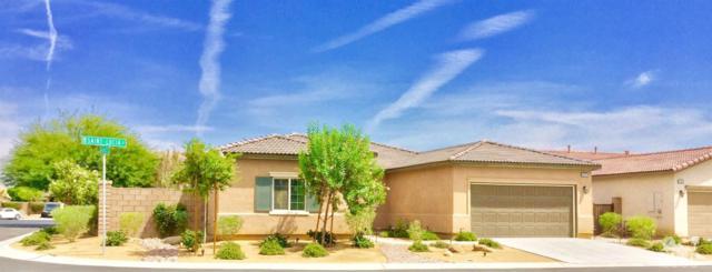 42578 Saint Lucia Street, Indio, CA 92203 (MLS #218023642) :: Brad Schmett Real Estate Group