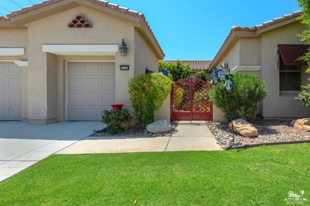 80485 Camino Santa Elise, Indio, CA 92203 (MLS #218024872) :: Brad Schmett Real Estate Group