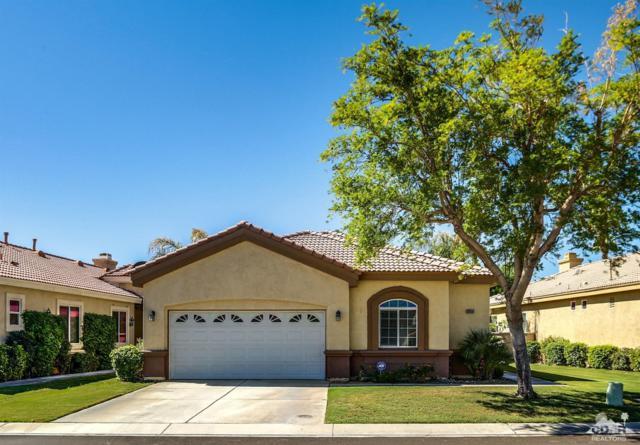 82659 Sky View Lane, Indio, CA 92201 (MLS #218025560) :: Brad Schmett Real Estate Group