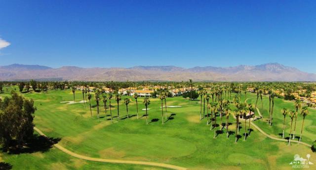 331 Vista Royale Drive, Palm Desert, CA 92211 (MLS #218025936) :: Deirdre Coit and Associates